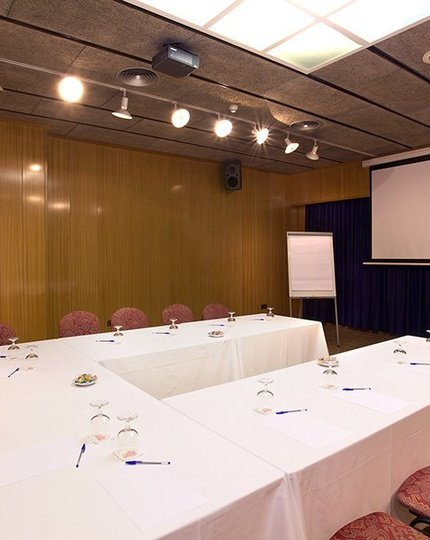 The Sercotel Domo has 2 meeting rooms with a maximum ...